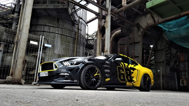 Mustang Stangdesign blackyellow sunflower matt schwarzmatt q4