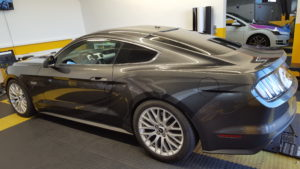 Mustang magnetic grey