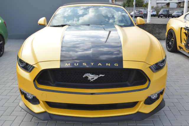 Mustang Cabrio  sunflower matt
