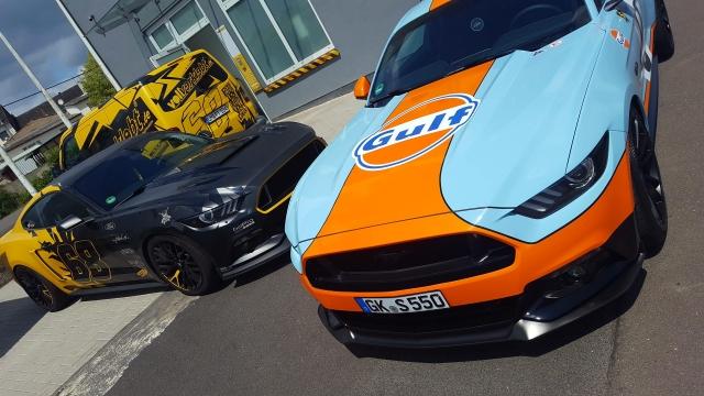 Mustang Gulf Design